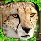 猎豹模拟图标