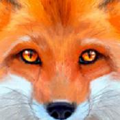 终极狐狸模拟器(角色无敌)