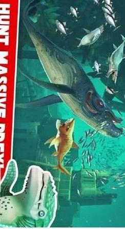 饥饿鲨鱼世界游戏截图