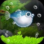 我的河豚鱼水族馆图标
