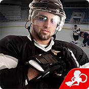 冰球格斗(Hockey Fight Pro)图标