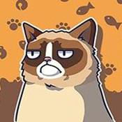 脾气暴躁猫