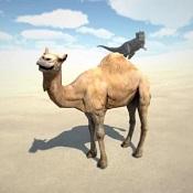 沙丘模拟器图标