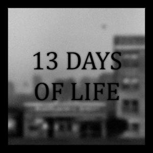 生命中的13天(13 DAYS OF LIFE)图标