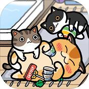 猫天堂:收藏家