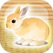 兔子养成游戏