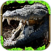 鳄鱼模拟器图标