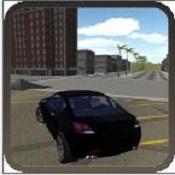 极限赛车驾驶3D图标