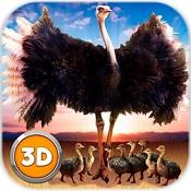 3D鸵鸟模拟