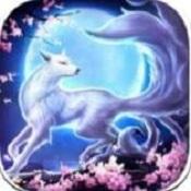 青丘狐之恋