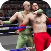 真正的标签队摔跤革命2018战士图标