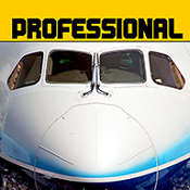 模拟飞行787
