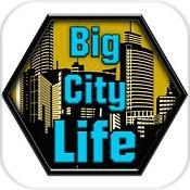 大城市的生活:模拟器图标