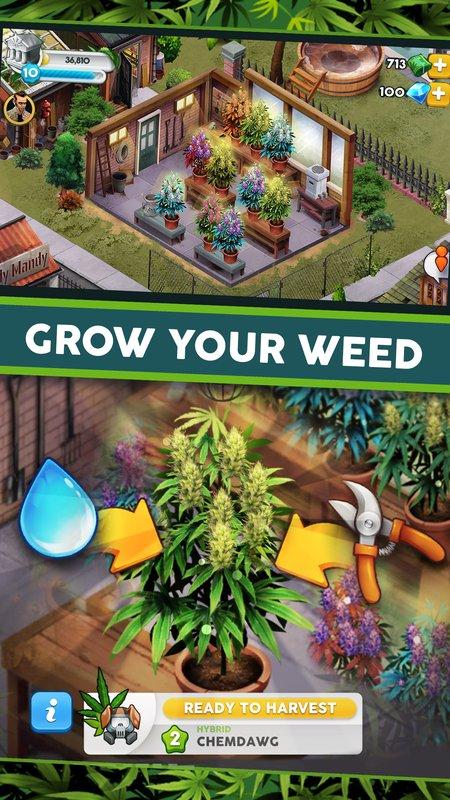 杂草成长截图1