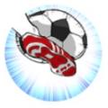微信暴走世界杯破解版图标