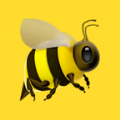 蜜蜂乐园图标