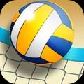 沙灘排球世界冠軍圖標