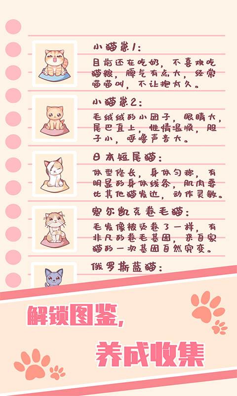 猫咪养成-云撸猫咪宣传图片