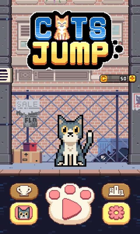 猫咪跳跃宣传图片