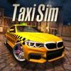 Taxi Sim 2020圖標