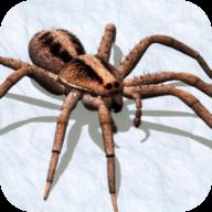 消灭蜘蛛模拟器汉化版图标