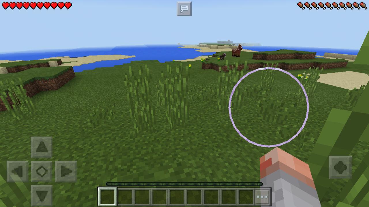 我的世界1.16.3版本游戏截图