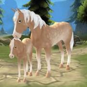 马儿天堂:我的梦想牧场